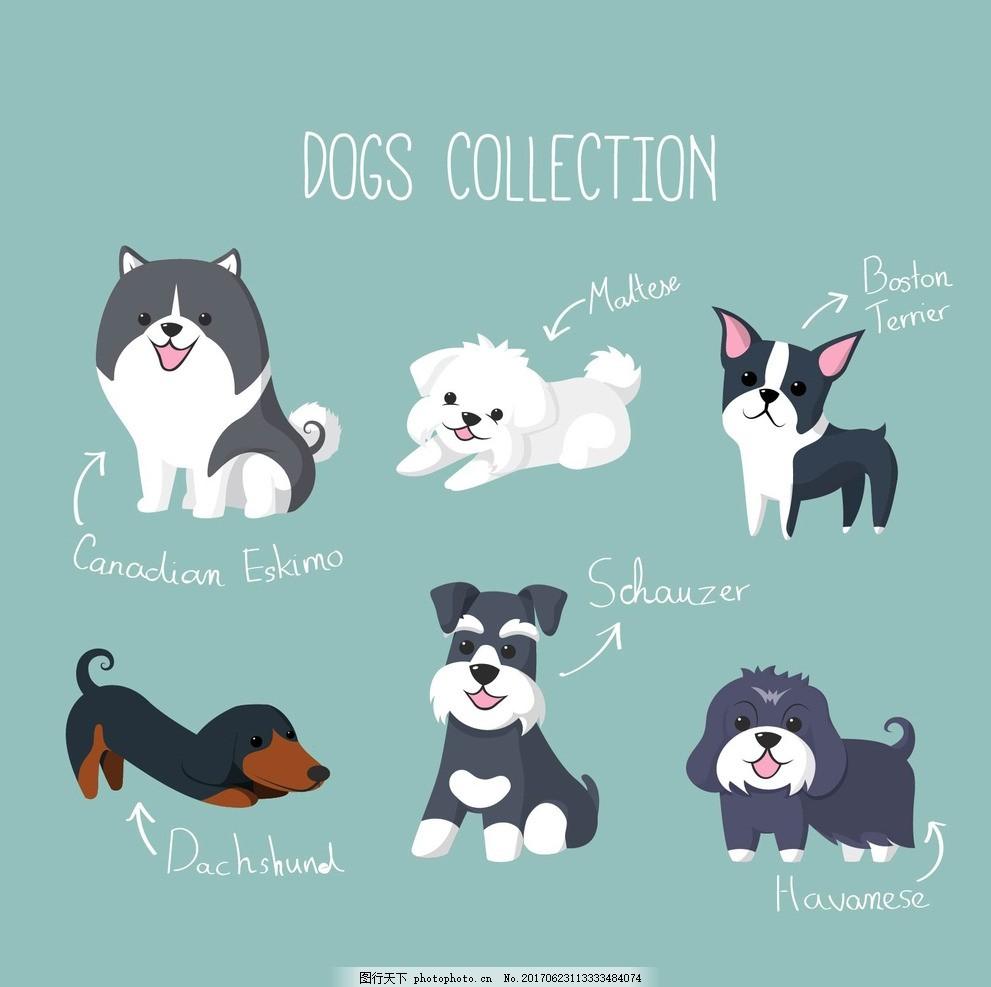 手绘漂亮的小狗 房子 自然 动物 卡通 绘制 可爱 宠物 绘画