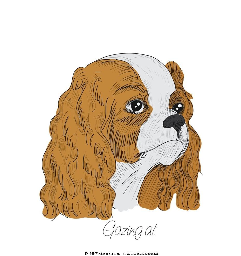 狗 小狗 狗狗 手绘狗 卡通狗 线描狗 手绘宠物狗 动物头像 线描狗头像