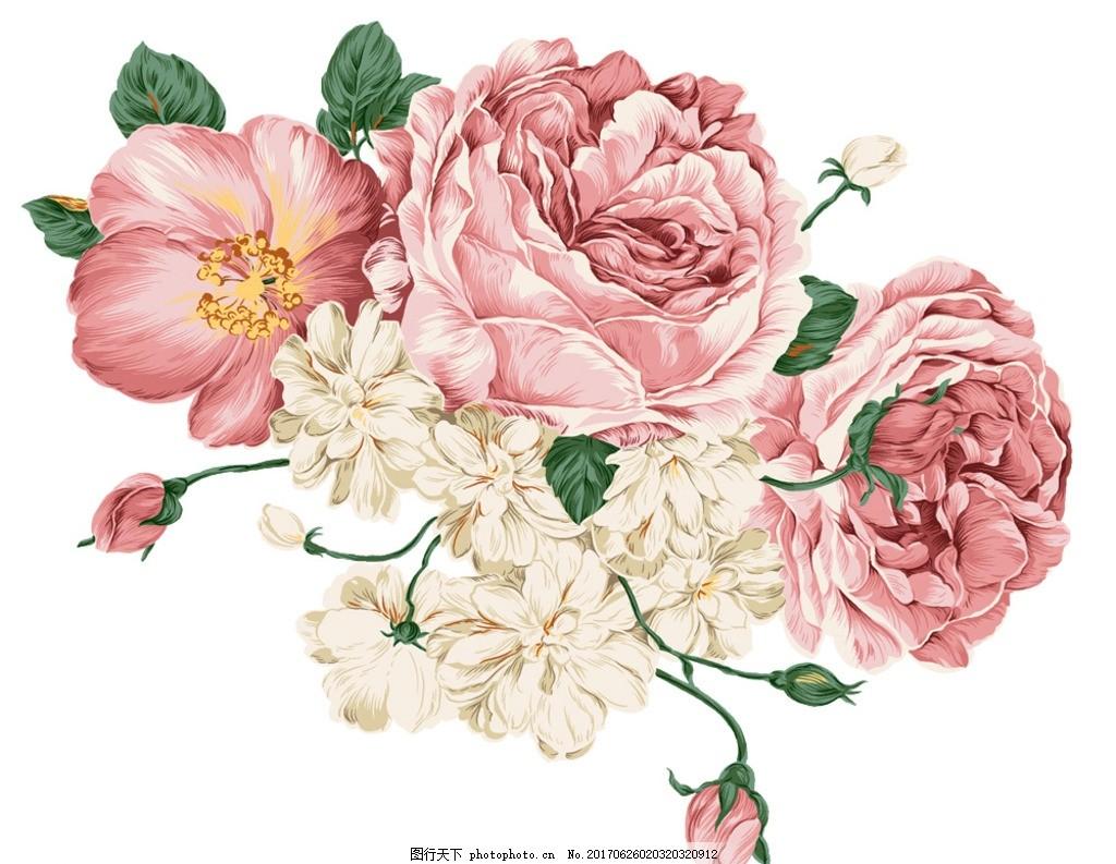 手绘花卉 装饰图案 植物花卉 装饰图稿 海报元素 海报装饰 复古花卉