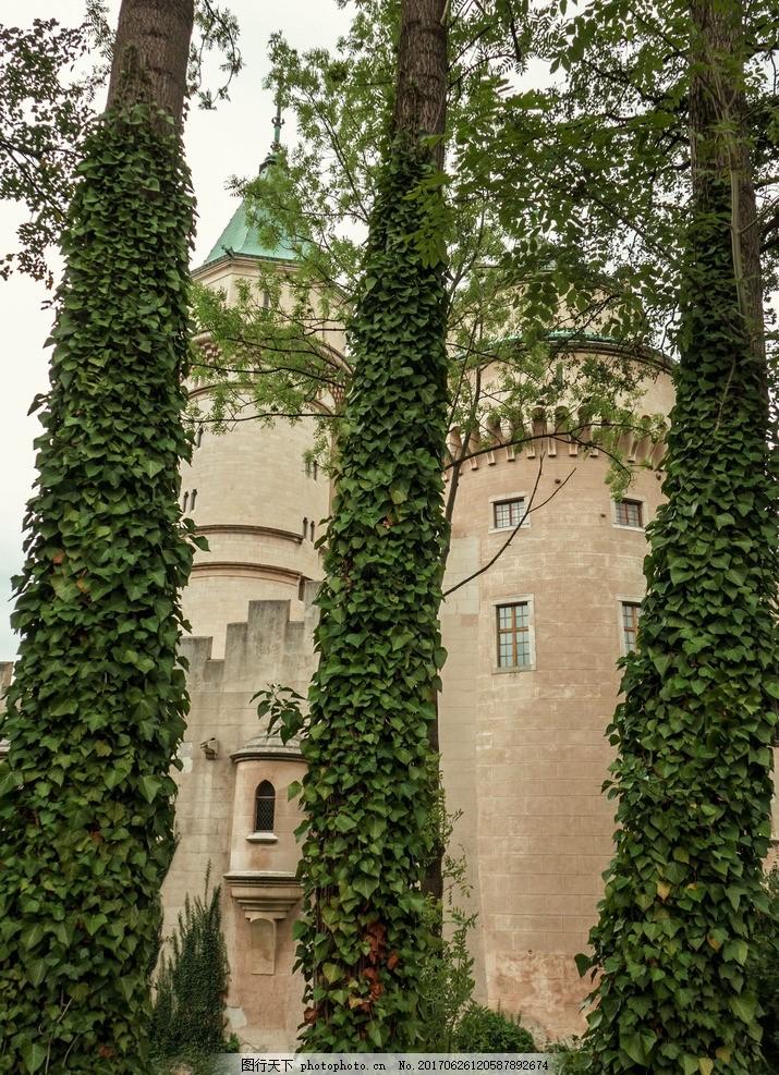 城堡 绿色 欧式 古典 建筑 树叶 树藤 商业 摄影 城市地产建筑摄影