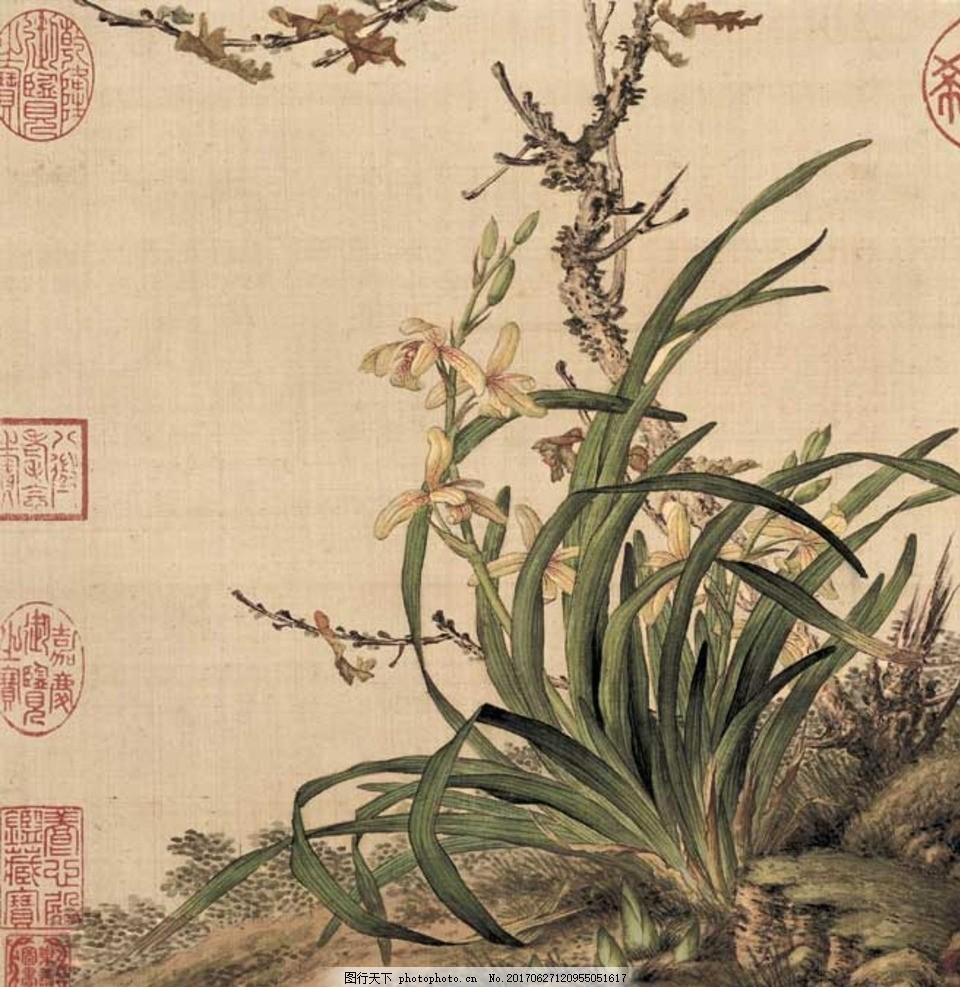 郎世宁 花鸟图册 清 十开 中国画 工笔画 工笔画鸟 古代 花鸟画