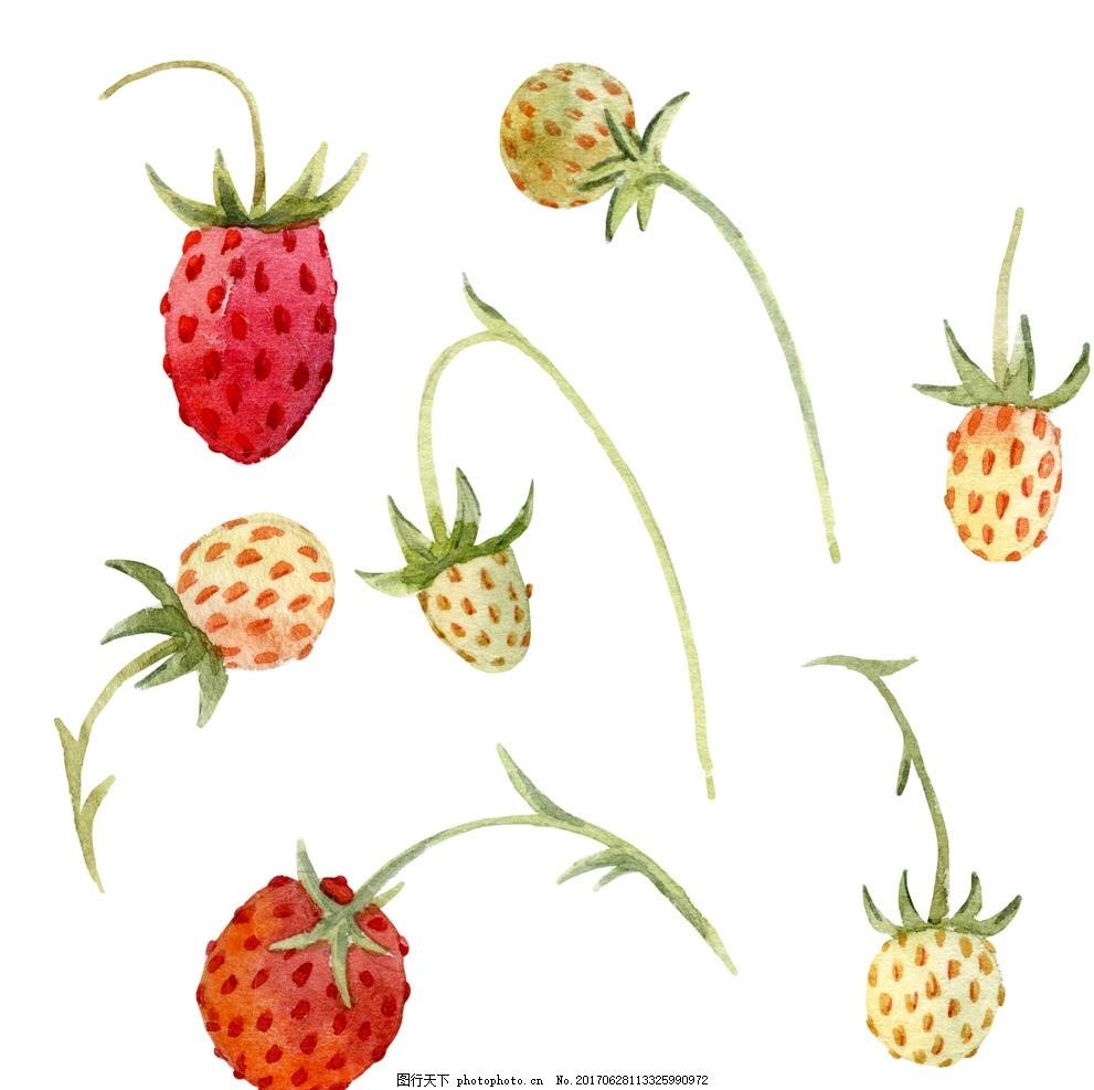 水彩草莓 水彩水果 水彩蔬菜 手绘水果 手绘果蔬 苹果 梨子 西瓜