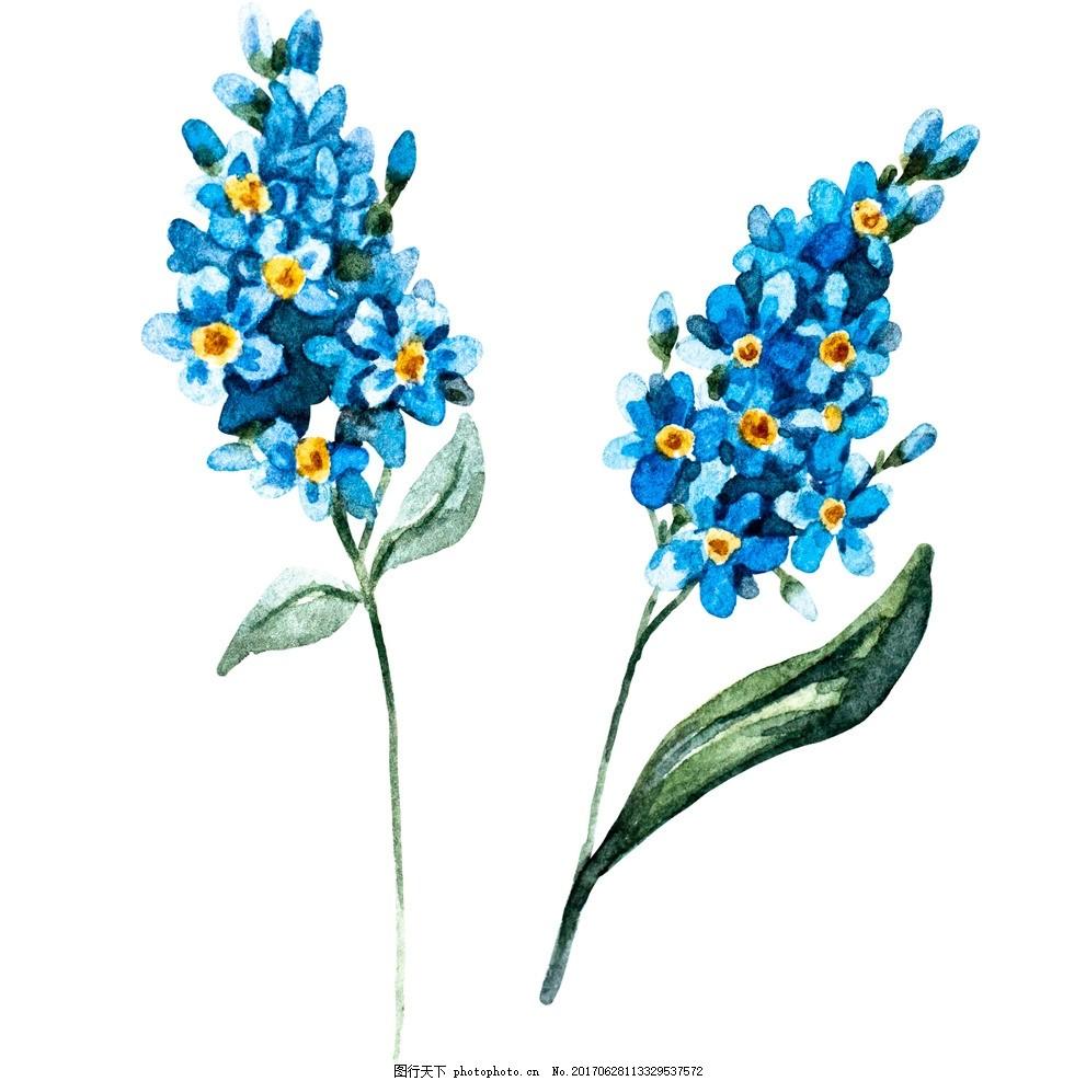 矢量图 素材 水彩 清新 可爱 花朵 花环 美丽 漂亮 树叶 叶子 植物