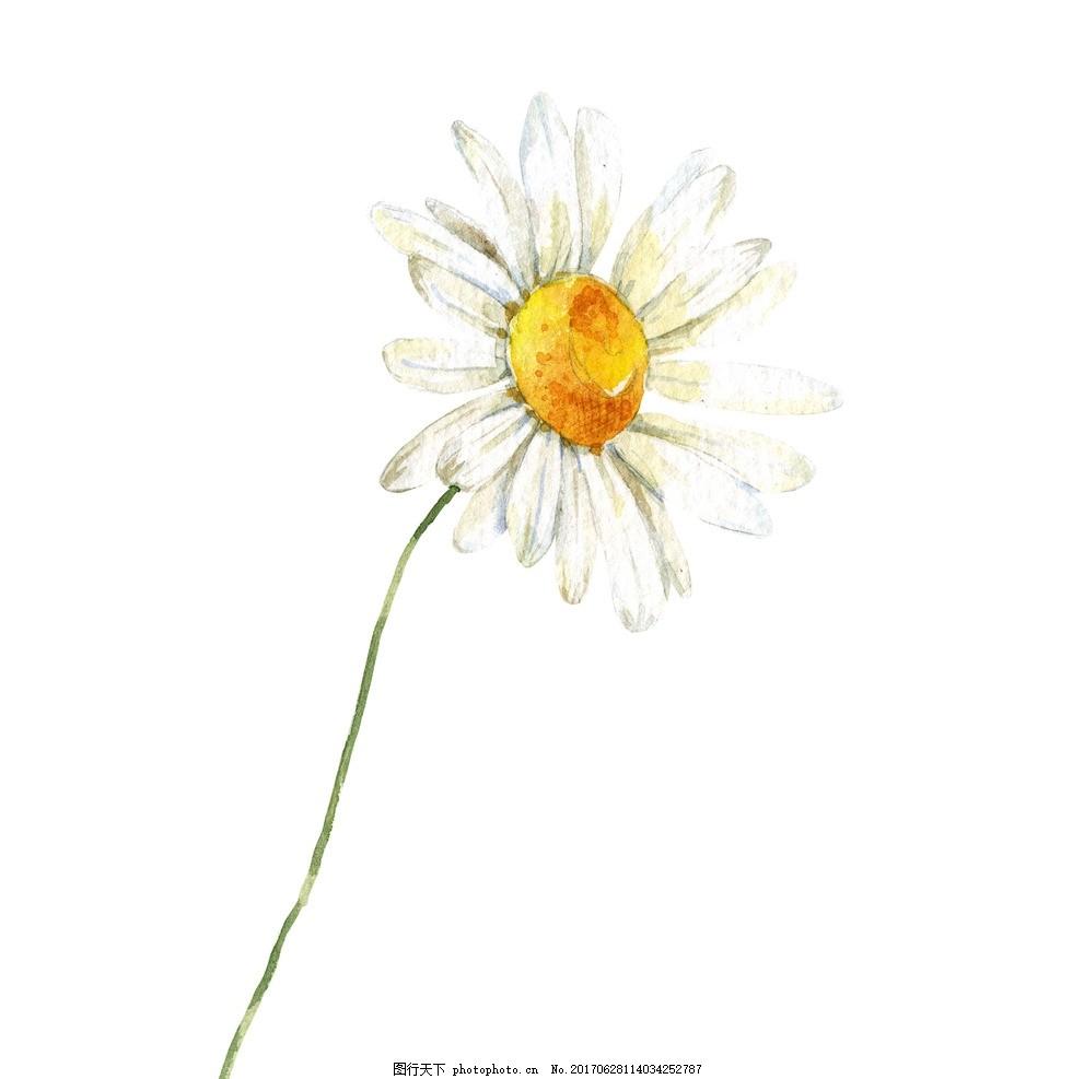 水彩花卉植物 彩绘 矢量图 清新 可爱 花朵 花环 美丽 漂亮