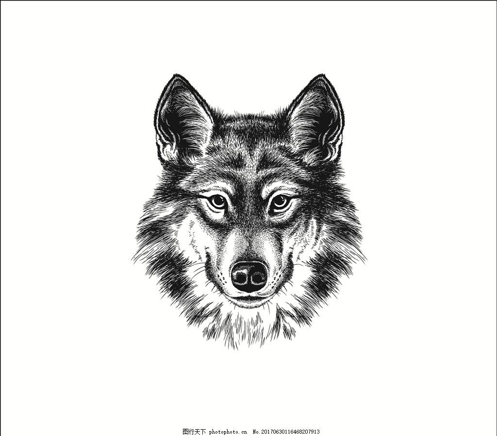 面料印花 布料印花 贴纸图案 猛兽 动物头像 手绘动物 线描动物 写实
